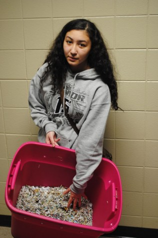 Vermicomposting grant brings worms to the school, community