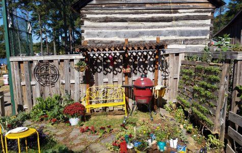 Judges devour FFA's chef-inspired garden