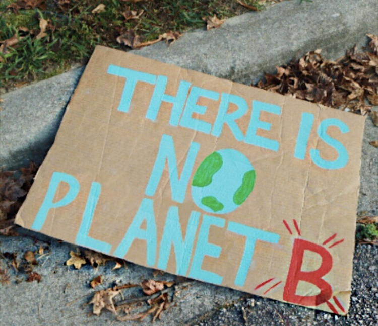 A fallen protest poster at the Raleigh Climate Strike.