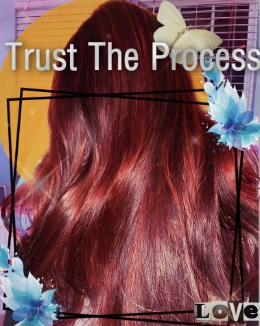 Trust the process:  Follow Graphics Editor Stephanie Arana on her hair-coloring journey