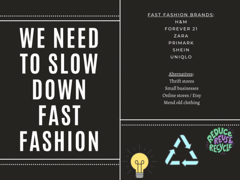 Fast fashion is detrimental to the health of our environment and there are many alternatives to help slow down the impacts.