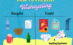 Be sure you understand what can and cannot be recycled! Wishcycling refers to the phenomenon of people recycling things that will never be reused. Graphic by Sage Cooley.