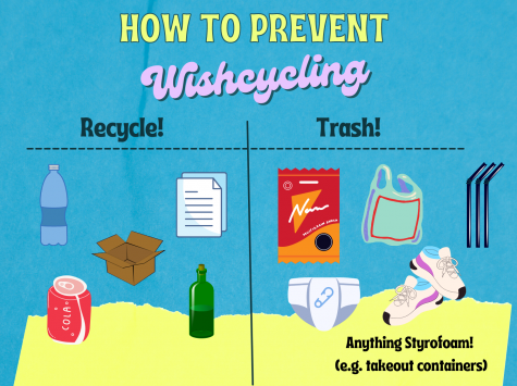 "Be sure you understand what can and cannot be recycled! ""Wishcycling"" refers to the phenomenon of people recycling things that will never be reused. Graphic by Sage Cooley."